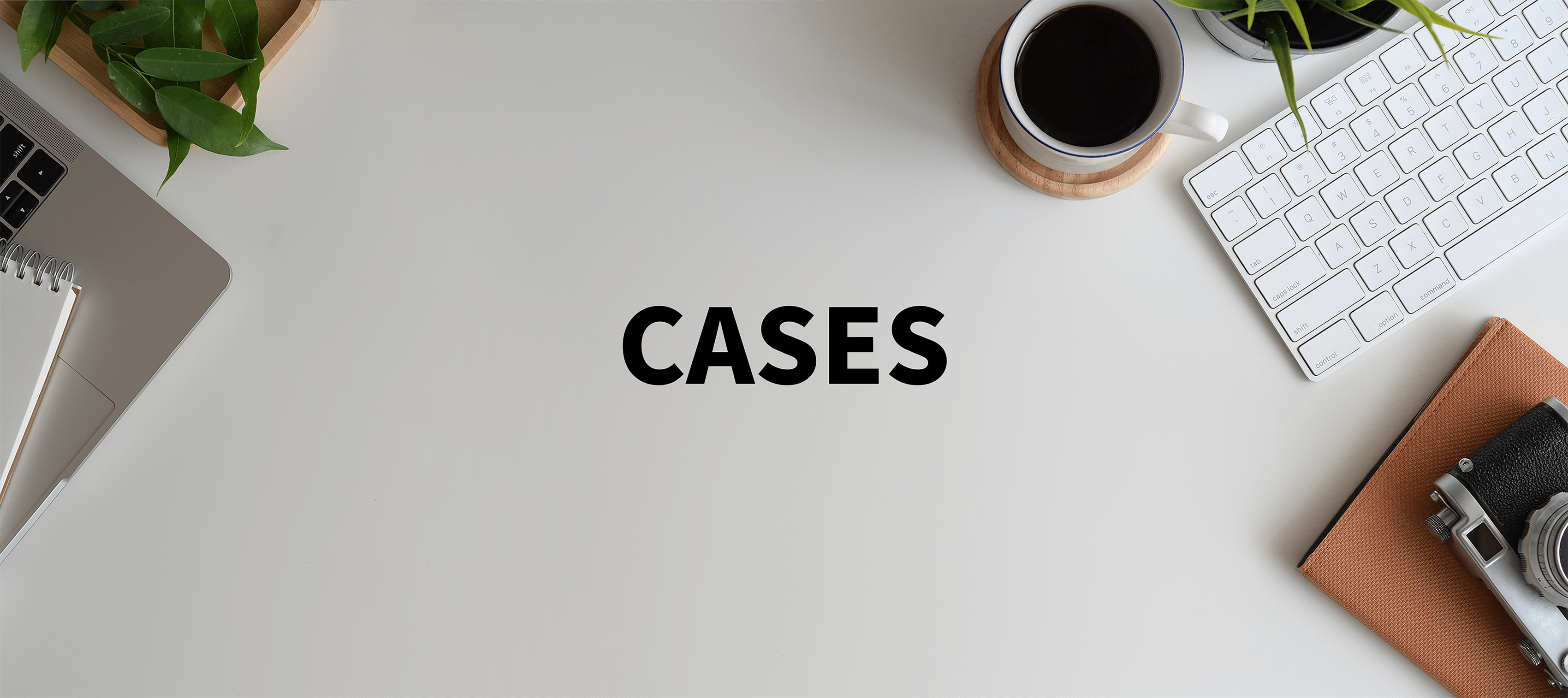 Cases under 5 mb